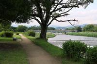 スケッチ・・・鴨川賀茂大橋下る - フィールド