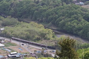 新緑の頃、荒川と国道に挟まれて走る汽車 - 2019年春・秩父鉄道 - - ねこの撮った汽車