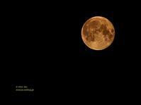 full moon - e-very day  フリーアナウンサー フジオカエリのフォト日記