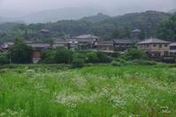 葛城市當麻37まぁ~い - ぶらり記録 2:奈良・大阪・・・