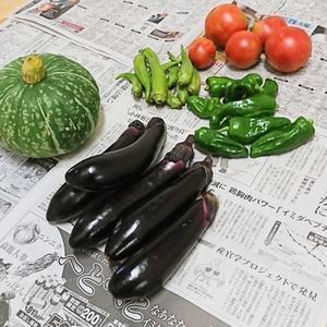 ++お野菜便&ナナのこと*++ - 私の暮らし*私のおうち*2