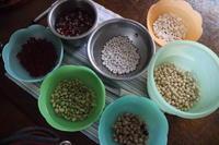 まめまめしく豆煮 - bonny-garden  Moco@