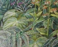 小玉スイカ収穫 - 絵と庭