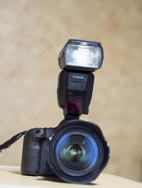 ストロボが使えるようになるとぐっと写真が楽しくなる! - Gyokubundo's Blog