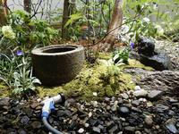 剪定 - 自然と住まいスタッフブログ