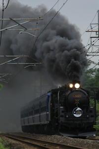往路は続く - 蒸気屋が贈る日々の写真-exciteVer