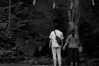 さざれ滝 - フォトな日々