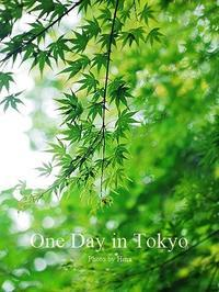 One Day in Tokyo:  青紅葉(あおもみじ) - Cucina ACCA