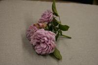 次回展示は「花と語らう―大佛次郎の花ごよみ」ただいま準備中です。 - 大佛次郎記念館NEWS