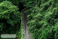 竜門ダムに沈んだ村行きの廃路 - Mark.M.Watanabeの熊本撮影紀行