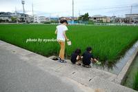 夏休みの始まり - nyaokoさんちの家族時間