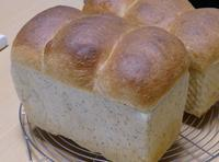 つぶつぶ山食やらバゲットやら - ~あこパン日記~さあパンを焼きましょう