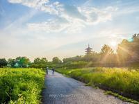 備中国分寺 - 道草Photo Life2
