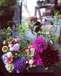 #サマーフラワーギフト -  Flower and cafe 花空間 ivory (アイボリー)