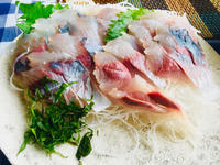 暑い日の鍋と鯵刺身! - ワタシの呑日記