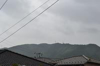 小雨の朝 - 閑話休題
