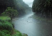 雨で21℃の朝・・・今朝の針畑川朽木小川・気象台より - 朽木小川・気象台より、高島市・針畑・くつきの季節便りを!