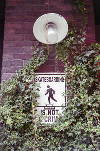 緑の中でスケートボーディングを楽しむ人 - Film&Gasoline