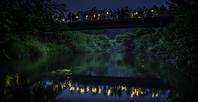 塩沢村・蛍めぐり祭2019 * 期待以上のホタルが見られました♪ - ぴきょログ~軽井沢でぐーたら生活~