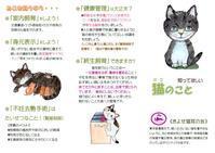 7月定例会開催(2019.7月) - きよせ猫耳の会(旧 飼い主のいない猫を考える会)