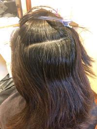 ヘアカラーで頭皮がヒリヒリ敏感になった方のNODIA(ノジア)で白髪染♪♪ - 観音寺市 美容室 accha