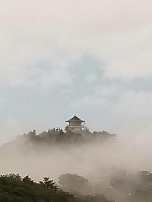 毎日霧と雨 - おルミの徒然日誌
