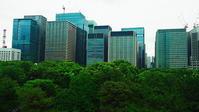 皇居の緑と丸ノ内ビル群 Ⅱ - 風の香に誘われて 風景のふぉと缶
