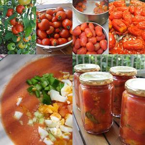 8月はトマト尽くし - グルグルつばめ食堂