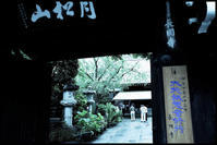 千住散歩-779 - Camellia-shige Gallery 2