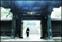 湯島 -17 - Camellia-shige Gallery 2