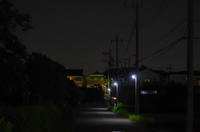 夜のお散歩 - mofmof倶楽部