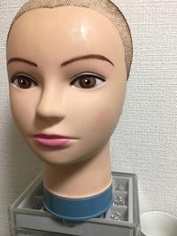 ウイッグのこと - 汎発性脱毛症と向き合う