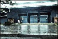 湯島 -18 - Camellia-shige Gallery 2