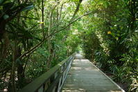 シンガポールLabrador ParkからSentosaへ、散歩 - 旅の備忘録