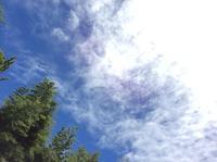 雨なくして虹は出ず! No rain  No rainbow!   2019.7 - Hawaiian LomiLomi サロン  華(レフア)邸