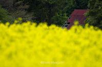 気になる赤い屋根 - ekkoの --- four seasons --- 北海道