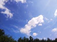 夏だー!247 - 萩セミナーハウスBLOG
