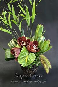 定期装花からシンビジウム:トスカニーブラウン - Impression Days