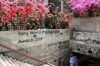 【写真展めぐり】Sony World Photography Awards 2019 - PHOTO Cruise