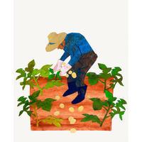 挿し絵の仕事新聞連載「未踏の老いを生きる04」 - yuki kitazumi  blog