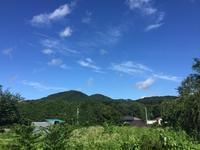 お庭デビュー - 高麗べぇコロコロ
