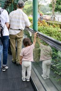 2019 子連れ香港・マカオ⑤ 〜タイパ・ビレッジってこんなところ〜 - 旅するツバメ                                                                   --  子連れで海外旅行を楽しむブログ--