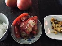 トマト豊作 - 糸巻きパレットガーデン