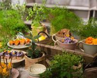 夏のテーブルコーディネート&フォトセミナー - 幸せのテーブル*maison flowertuft-flowers&tablesXphoto