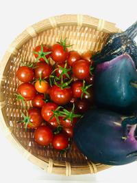 トウモロコシと枝豆のストウブ蒸しと土用の丑の日! - ワタシの呑日記