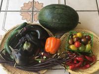 知野ファームの夏野菜と鮪の漬け丼 - やせっぽちソプラノのキッチン2