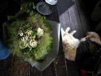 ワンちゃんの命日に花束。「スモークツリーと青りんごを入れて」。2019/07/25。 - 札幌 花屋 meLL flowers