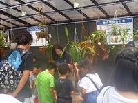 食虫植物とさぎ草の観察会 - 手柄山温室植物園ブログ 『山の上から花だより』