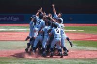 第101回全国高等学校野球選手権神奈川大会 決勝戦 - あの日感じた風