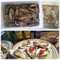 仙鳳趾(せんぽうし)の鳳牡蠣 - 気ままな食いしん坊日記2